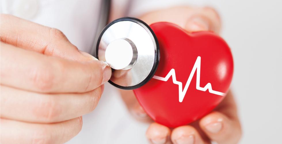 Целостное и правильное функционирование Вашей сердечно-сосудистой системы
